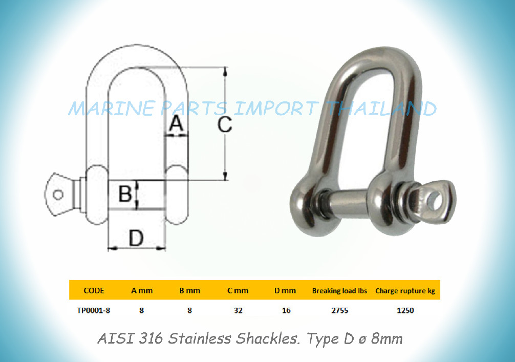 Stainless Shackles.  8mm