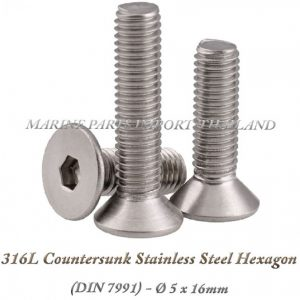 316L20Countersunk20Stainless20Steel20Hexagon205X16mm202820Pack20of202202920 0POS