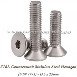 316L20Countersunk20Stainless20Steel20Hexagon205X25mm202820Pack20of202202920 0POS